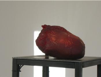 """Annabelle Hyvrier, """"installation coeur"""""""